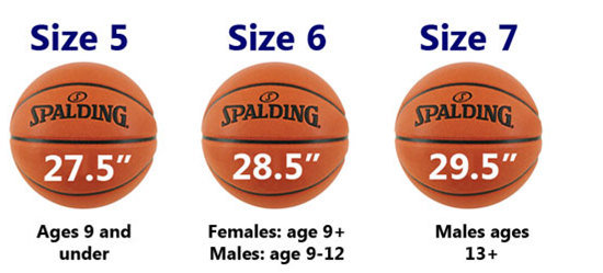 Basketball Sizing Chart